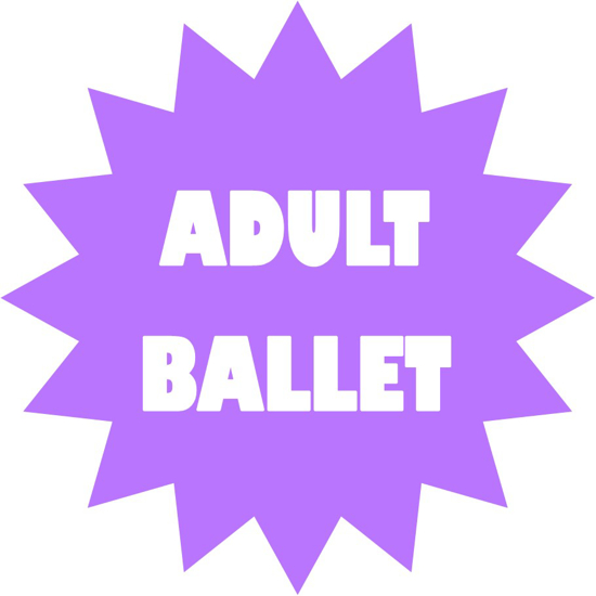Picture of ADULT BALLET - block