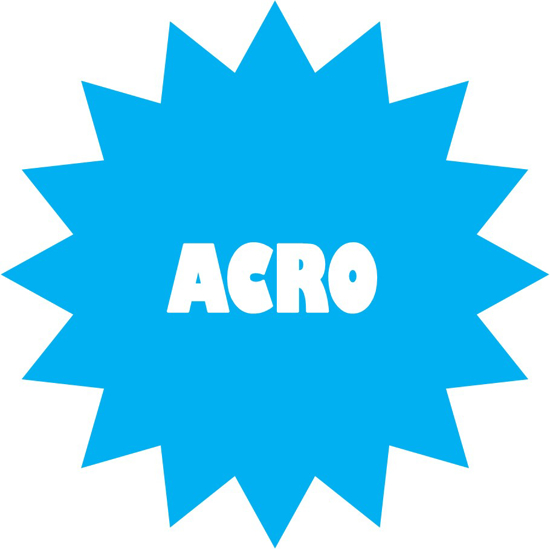 Picture of Acro Lessons - in studio