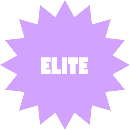Picture of Elite Team