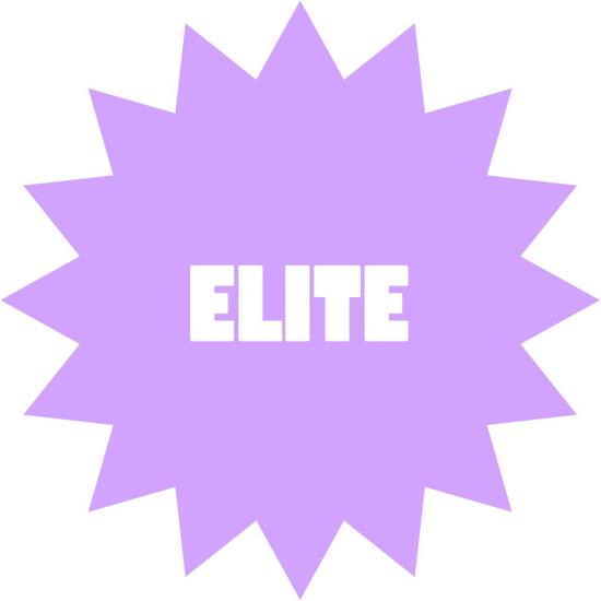 Picture of Elite Team