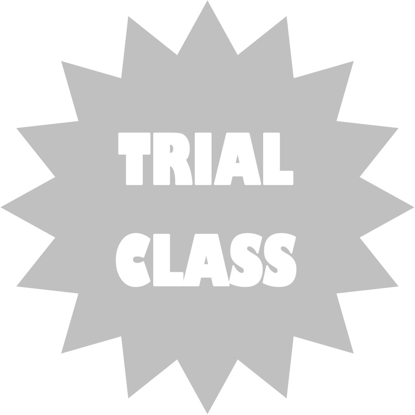Picture of Trial lesson - lockdown